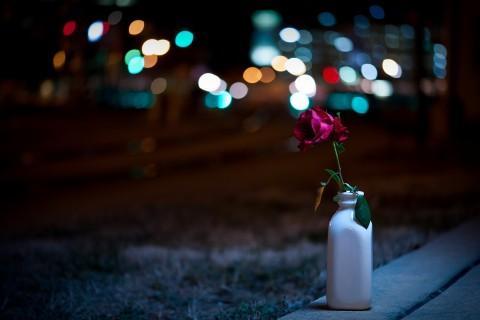 霓虹下的玫瑰