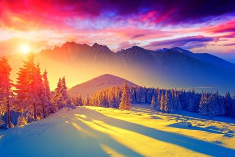 冬天的阳光