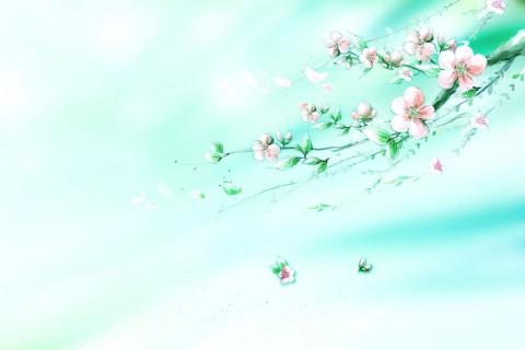 花落尽荒凉一片