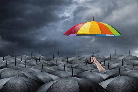 雨中的彩色雨伞
