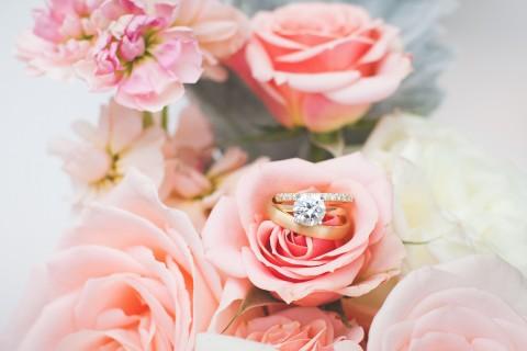 玫瑰中的钻戒