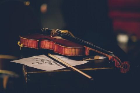 小提琴乐器