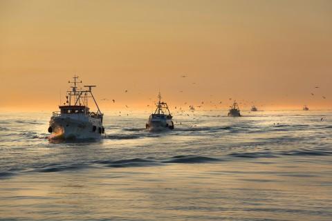 行驶中的渔船