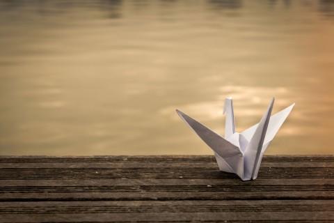 纸鹤的心愿