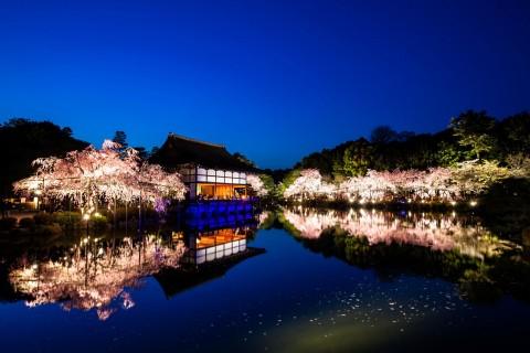 平安神宫夜景