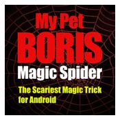 Magic Spider