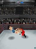 wwe美国职业摔跤大赛