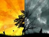 白天和黑夜