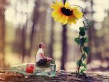 创意向日葵