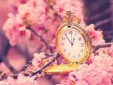 等待花开时与你相爱