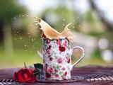 溅起的奶茶