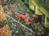 我的小提琴之梦