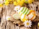 彩色可爱彩蛋