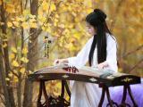 中国古筝艺术
