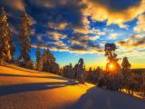 冬日温暖人心的阳光