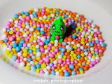 爱吃糖豆的小恐龙