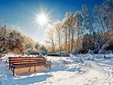 冬日里温暖人心的阳光