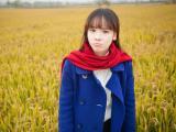 稻田里的女孩