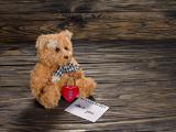 等待爱情的小熊