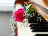 音乐是最动听的情话