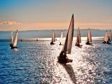 大海里的帆板