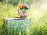 箱子上的插花