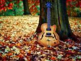 孤独的吉他