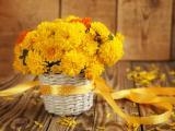 黄色菊花插花