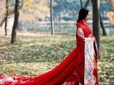 张含韵兰陵王妃