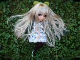 草地上的娃娃