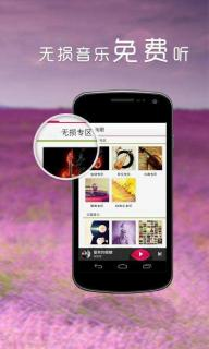 多米音乐iPhone版截图