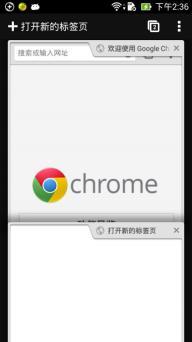 谷歌浏览器iPhone版截图
